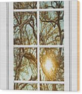 Golden Forest  Branches White 8 Windowpane View Wood Print