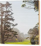 Golden Gate Park San Francisco Wood Print by Artist and Photographer Laura Wrede
