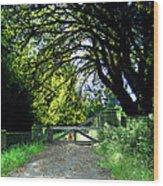 Golden Gate Wood Print by Ric Soulen