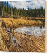 Golden Grass At Red Rocks Lake Wood Print