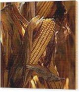 Golden Harvest Wood Print