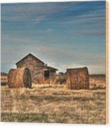 Golden Hay Wood Print by Lisa Knechtel