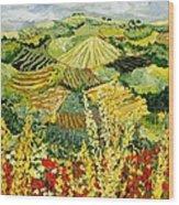 Golden Hedge Wood Print
