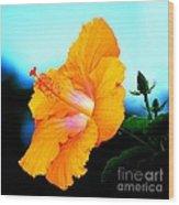 Golden Hibiscus Wood Print