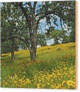 Golden Hillside Wood Print by Robert Anschutz