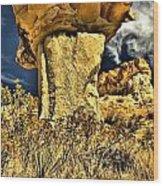 Golden Hoodoo Wood Print