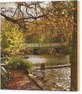 Golden Lake At Botanical Gardens Wood Print