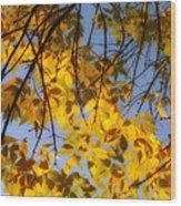 Golden Leaf Cascade Wood Print