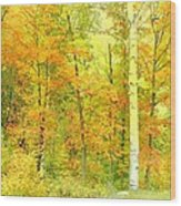 Golden Leaves  Wood Print by Dianne  Lacourciere