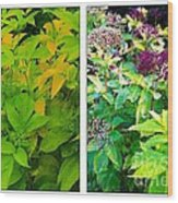 Golden Leaves To Purple Seeds Wood Print