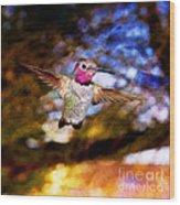 Golden Light Hummingbird Flight Wood Print