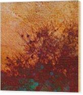 Golden Light - Nature Art Wood Print