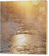 Golden Light Wood Print by Sylvia  Niklasson