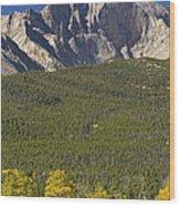 Golden Longs Peak View Wood Print