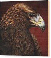 Golden Look Golden Eagle Wood Print