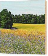 Golden Meadow Wood Print