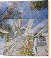 Golden Mean Holga Garden 1 Wood Print by Carolina Liechtenstein