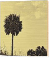 Golden Palm Silhouette Wood Print