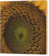 Golden Petals Wood Print