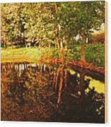 Golden Pond 4 Wood Print