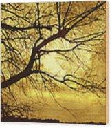Golden Pond Wood Print by Ann Powell