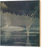 Golden Pond Lily Wood Print by Bedros Awak
