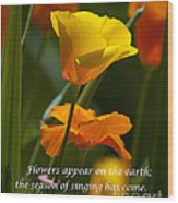 Golden Poppy Floral  Bible Verse Photography Wood Print