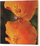 Golden Poppyies Wood Print by Gilbert Artiaga