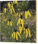 Golden Prairie Coneflower Watercolor Effect Wood Print