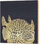 Golden Puffer Fish On Charcoal Black Wood Print