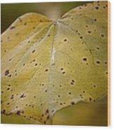Golden Redbud Heart Wood Print