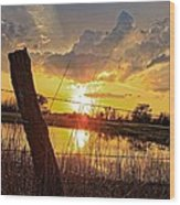 Golden Reflection With A Fence Wood Print
