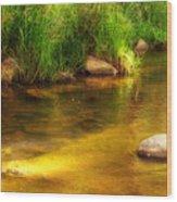Golden Reflections Wood Print