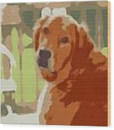 Golden Retriever Profile Wood Print