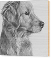 Golden Retriever Puppy In Charcoal One Wood Print