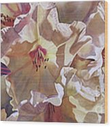Golden Rhododendronfull Wood Print