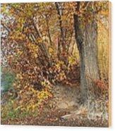 Golden Riverbank Wood Print