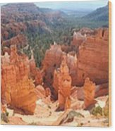 Golden Rocks Of Bryce Canyon  Wood Print