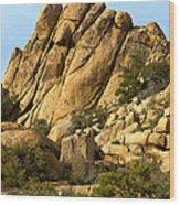 Golden Rocks Of Hidden Valley Wood Print