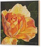 Golden Rose Blossom Wood Print