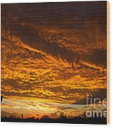 Golden Saguaro Wood Print