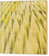 Golden Sand Pattern Created By Surf On Beach Wood Print