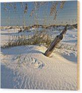 Golden Sea Oats Wood Print