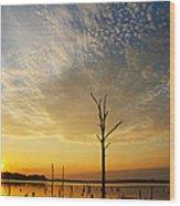Golden Shadows Wood Print