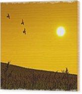 Golden Sky... Wood Print