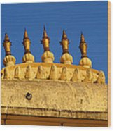 Golden Spires Udaipur City Palace India Wood Print