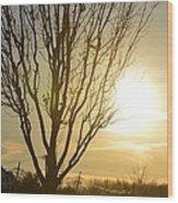 Golden Spot Wood Print