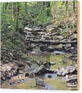 Golden Spring Waters Of Hurricane Branch Wood Print