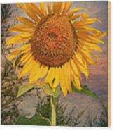 Golden Sunflower Wood Print by Adrian Evans
