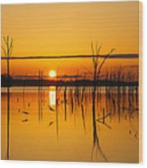 Golden Sunrise IIi Wood Print